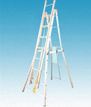 platform-ladder